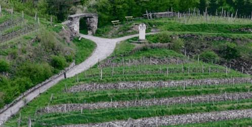 Rotes Tor-marken i Wachau -- billed fra Hirtzbergers hjemmeside
